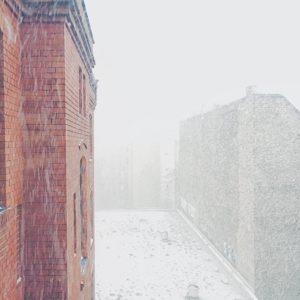 Der Januar in Bildern